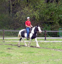 Daniel and Angel.  This was her second session under saddle.